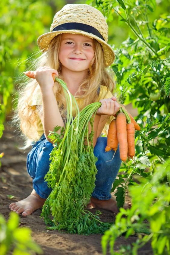 Zostać ogrodnikiem…