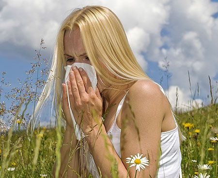 5 pytań o  katar alergiczny