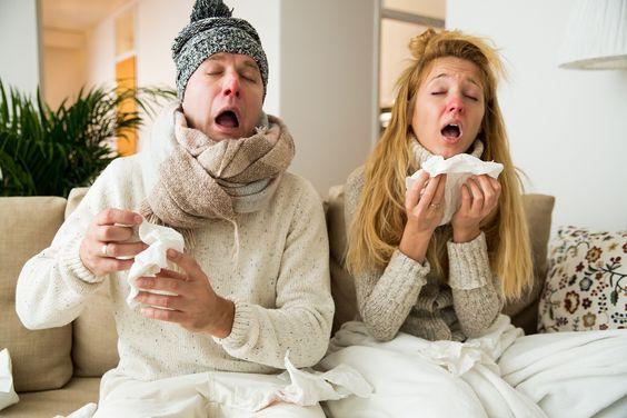 Zioła na przeziębienie