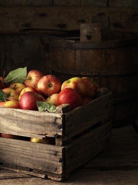 Jabłka – doceńmy, co dobre i nasze – część 2
